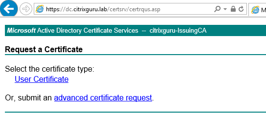 Select Advanced certificate request