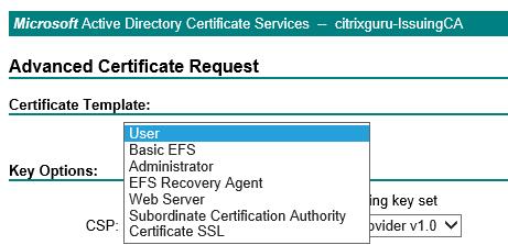 Web enrollment Lab: Part 15 – Configure SSL in StoreFront Lab: Part 15 – Configure SSL in StoreFront CitrixGuru Lab Capture 216 1447626027